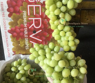 NHO XANH THOMPSON SEEDLESS